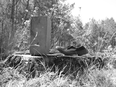 shoe brick black and white