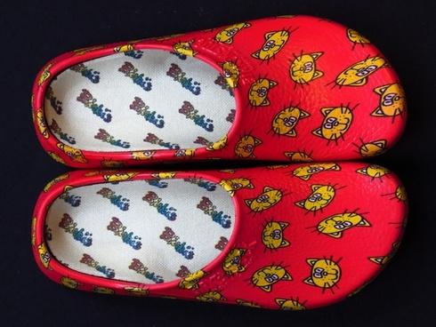 shoe slipper clog