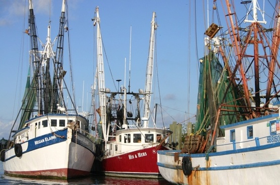 shrimp boats coast