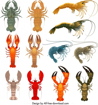 shrimp icons collection colorful shapes sketch