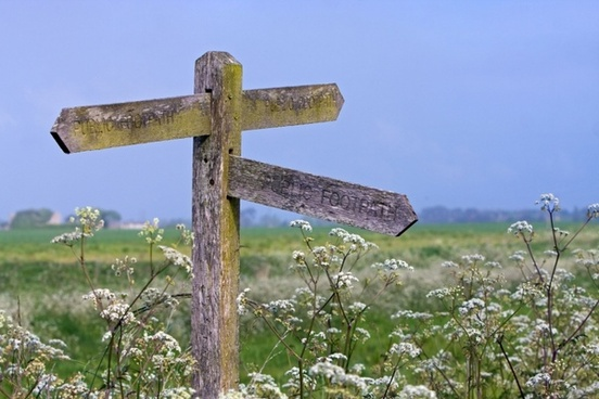signpost wooden pointer