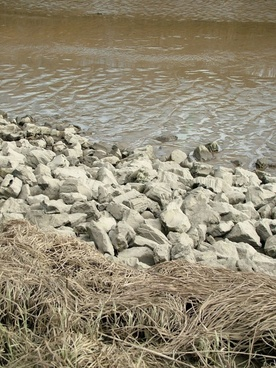 silt and stones
