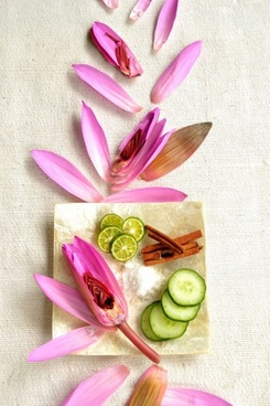 simple and elegant petals decoration 03 hd picture