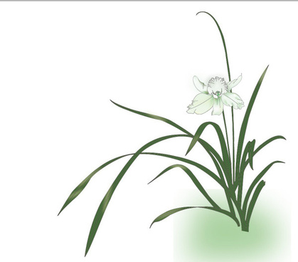 simple orchid design vector