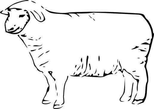 Single Sheep clip art