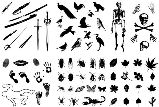 skeleton leaves insects birds imprint sword silhouette vector