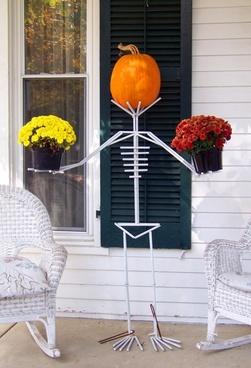 skeleton pumpkin autumn
