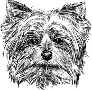 sketch dog design vector