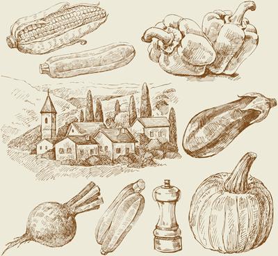 sketch village with vegetables vector