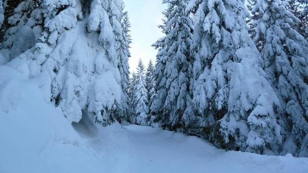 ski tour winter snow