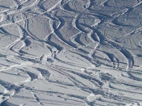 skiing departure wag