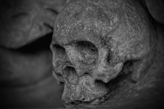 skull and crossbones skull dead