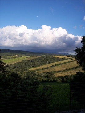 sky campaign vineyard