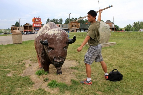 slaying a minor bison in the black hills south dakota