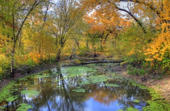 small autumn stream at merrick state park wisconsin