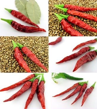 small chili hd picture 2 6p