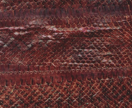 snake leather skin background