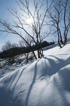 snow and sunlight
