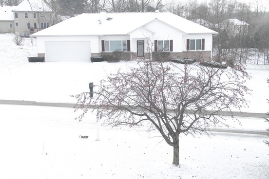 snow covered house on street with bare tree