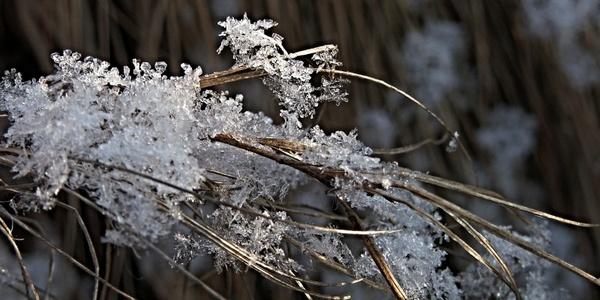 snow flakes led