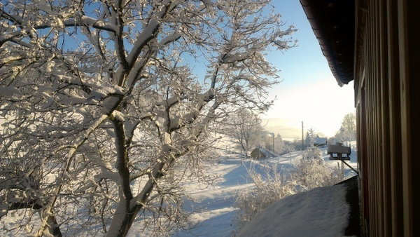 snow landscape winter blast