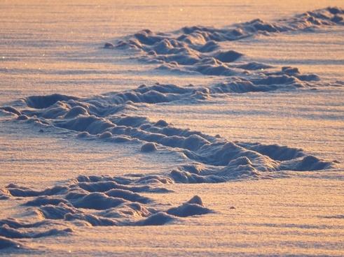 snow lane traces snow