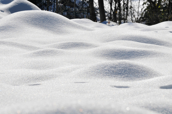 snow waves