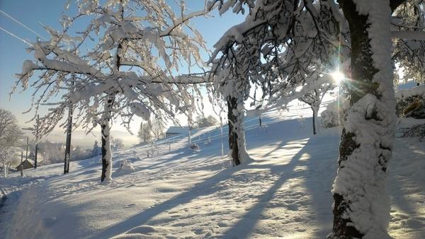 snow winter blast landscape