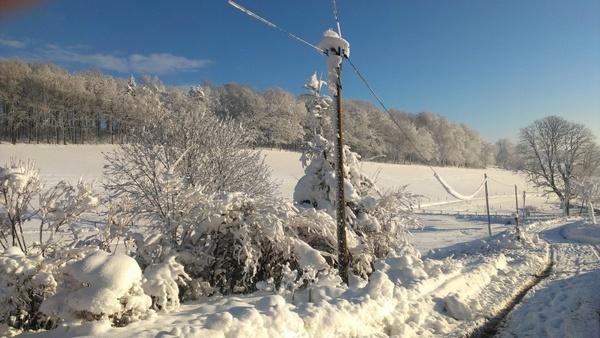 snow winter winter magic
