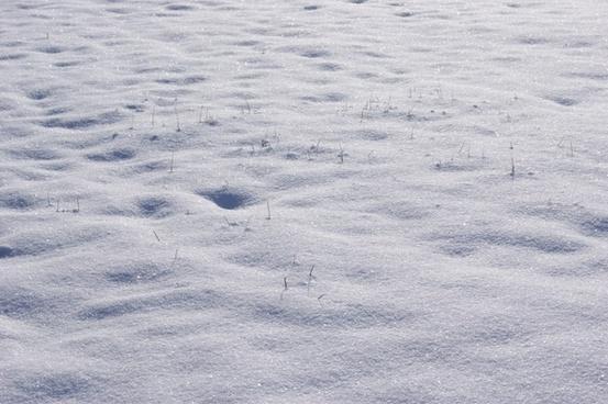 snow winter wintry