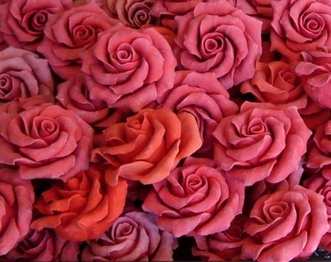 soap rose pink