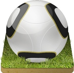 Soccer ball grass