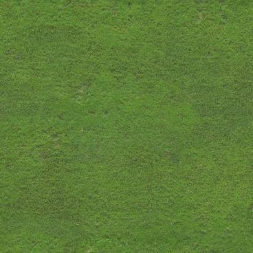 soccer field turf 3