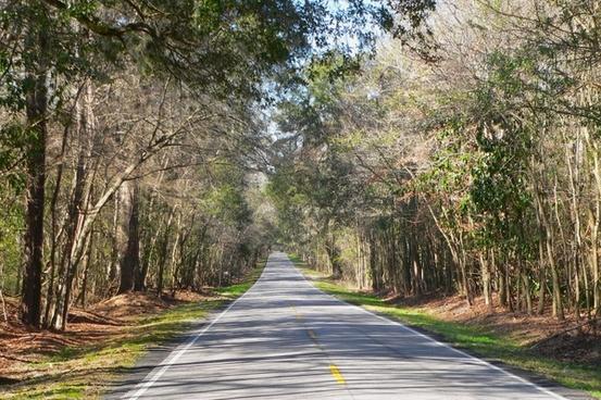 south carolina country countryside