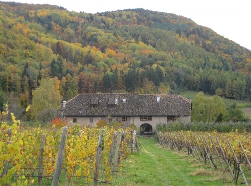 south tyrol landscape building