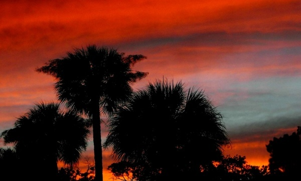 southern set sun
