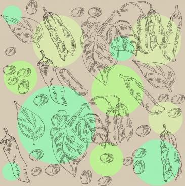 soybean background nut leaf icons handdrawn sketch