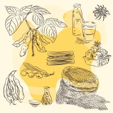 soybean design elements handdrawn icons sketch