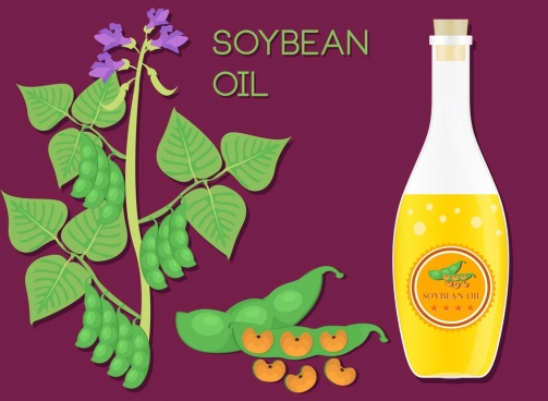 soybean oil advertisement green vegetable glass bottle icons