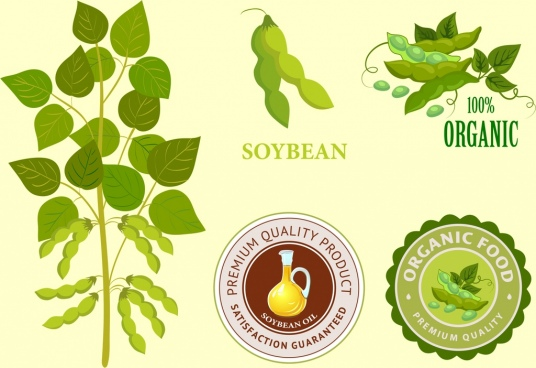 soybean products identity sets tree seal logotypes icons
