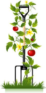 spade and tomato vector
