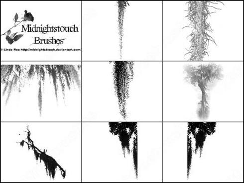 spanish moss brush
