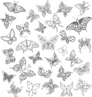 butterflies icons black white flat handdrawn sketch