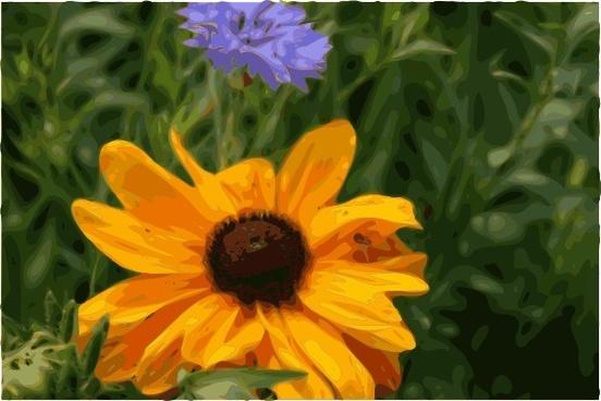 Spider Flower clip art