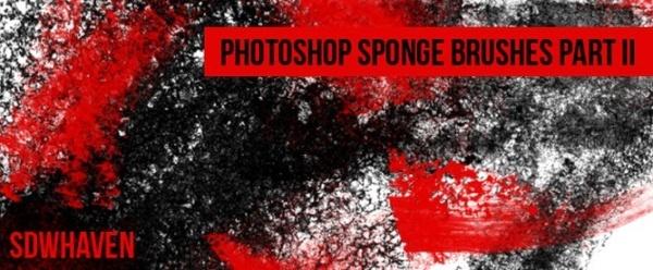 Sponge Brushes