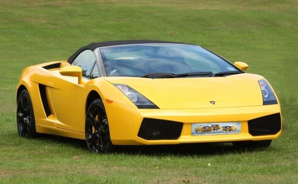 sportscar car sports