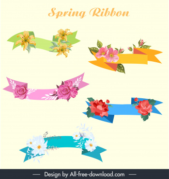 spring decor elements ribbon shapes colorful petals decor