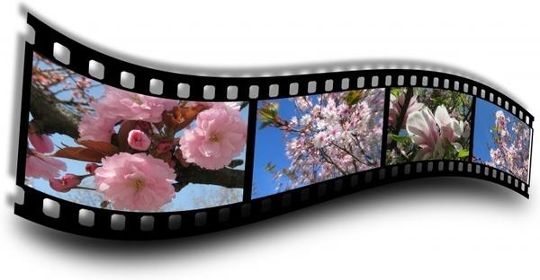 spring film filmstrip