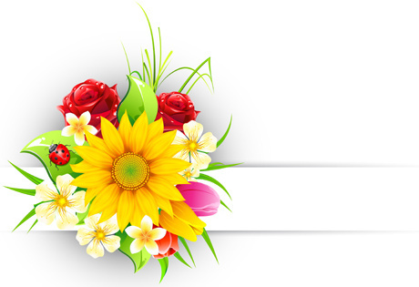 spring flower elements greeting cards vector