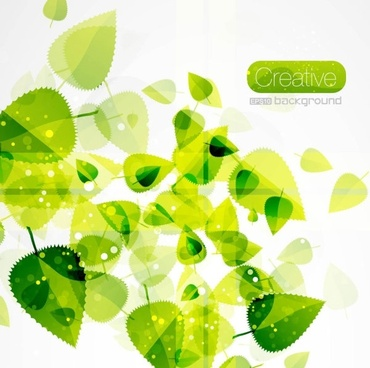 spring green leaves 03 vector